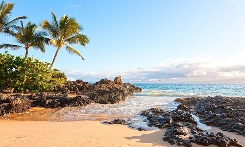 Top 3 Reasons Why Tourist Love Springtime in Hawaii